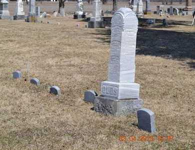 OLDS, LOT OVERVIEW - Branch County, Michigan | LOT OVERVIEW OLDS - Michigan Gravestone Photos