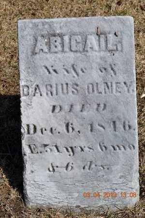 MAXWELL OLNEY, ABIGAIL - Branch County, Michigan | ABIGAIL MAXWELL OLNEY - Michigan Gravestone Photos