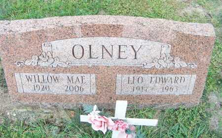 OLNEY, WILLOW - Branch County, Michigan | WILLOW OLNEY - Michigan Gravestone Photos