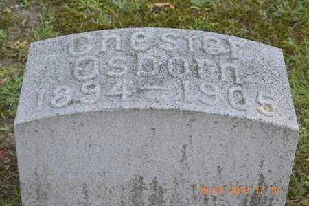 OSBORN, CHESTER - Branch County, Michigan | CHESTER OSBORN - Michigan Gravestone Photos