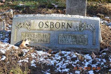 OSBORN, ERNEST H. - Branch County, Michigan | ERNEST H. OSBORN - Michigan Gravestone Photos