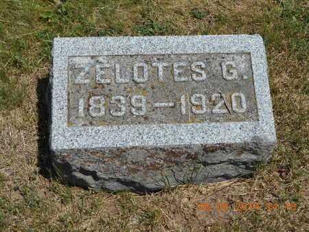 OSBORN, ZELOTES G. - Branch County, Michigan | ZELOTES G. OSBORN - Michigan Gravestone Photos