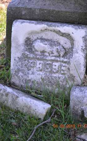 PAINE, PHEBE - Branch County, Michigan | PHEBE PAINE - Michigan Gravestone Photos