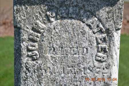 PALMATEER, JOHN - Branch County, Michigan | JOHN PALMATEER - Michigan Gravestone Photos