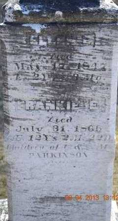 PARKINSON, ELLEN/FRANKIE - Branch County, Michigan | ELLEN/FRANKIE PARKINSON - Michigan Gravestone Photos