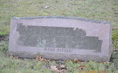 PATTERSON, T. GRAYDON - Branch County, Michigan | T. GRAYDON PATTERSON - Michigan Gravestone Photos