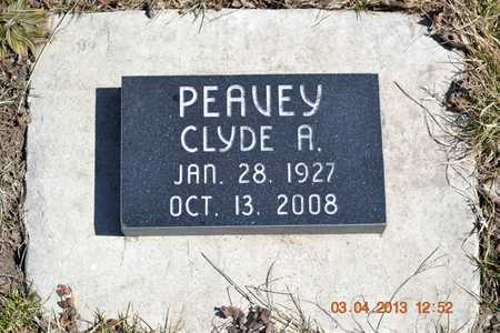 PEAVEY, CLYDE A. - Branch County, Michigan   CLYDE A. PEAVEY - Michigan Gravestone Photos