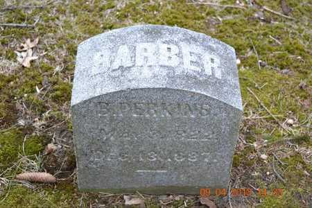 PERKINS, BARBER - Branch County, Michigan | BARBER PERKINS - Michigan Gravestone Photos
