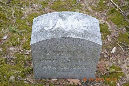 PERKINS, JANE - Branch County, Michigan | JANE PERKINS - Michigan Gravestone Photos