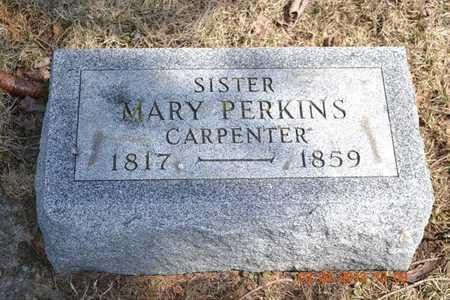 CARPENTER PERKINS, MARY - Branch County, Michigan | MARY CARPENTER PERKINS - Michigan Gravestone Photos