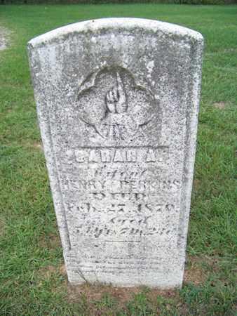 PERKINS, SARAH - Branch County, Michigan | SARAH PERKINS - Michigan Gravestone Photos