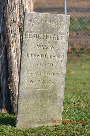 PREAST, RUBIN - Branch County, Michigan   RUBIN PREAST - Michigan Gravestone Photos