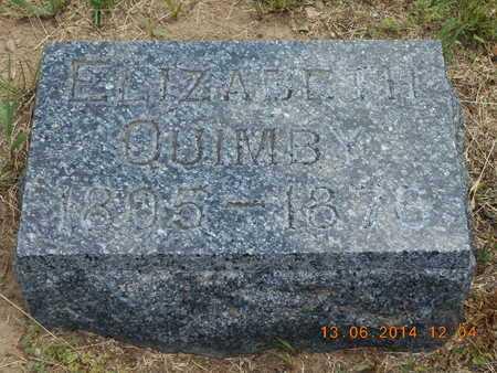 QUIMBY, ELIZABETH - Branch County, Michigan | ELIZABETH QUIMBY - Michigan Gravestone Photos