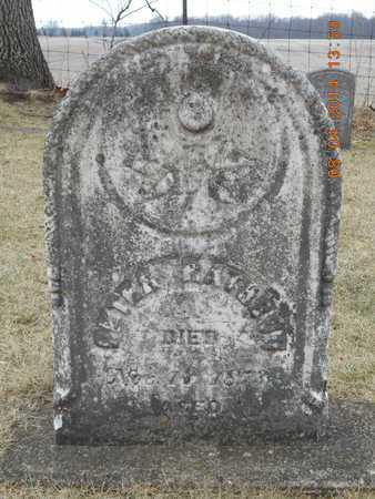 RATHBUN, PETER - Branch County, Michigan | PETER RATHBUN - Michigan Gravestone Photos