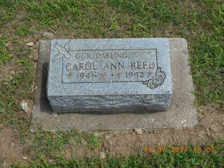REED, CAROL ANN - Branch County, Michigan | CAROL ANN REED - Michigan Gravestone Photos