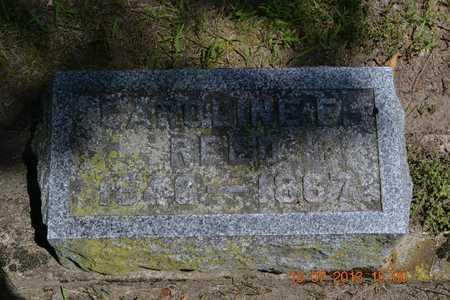 REED, CAROLINE E. - Branch County, Michigan | CAROLINE E. REED - Michigan Gravestone Photos