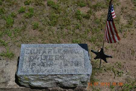 REED, CHARLES A. - Branch County, Michigan | CHARLES A. REED - Michigan Gravestone Photos