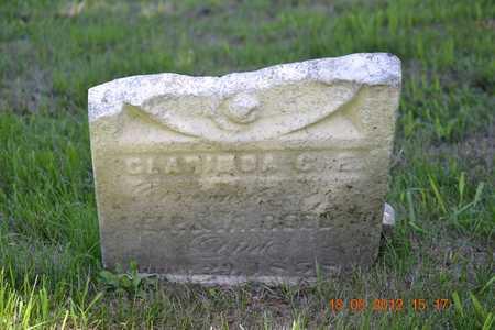 REED, CLARINDA C.E. - Branch County, Michigan | CLARINDA C.E. REED - Michigan Gravestone Photos
