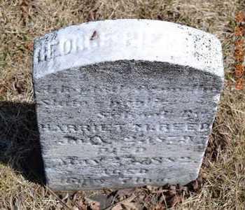 REED, HARRIET M. - Branch County, Michigan | HARRIET M. REED - Michigan Gravestone Photos