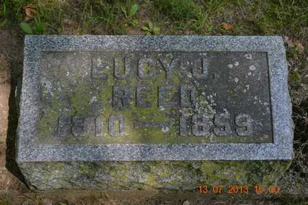 REED, LUCY J. - Branch County, Michigan | LUCY J. REED - Michigan Gravestone Photos