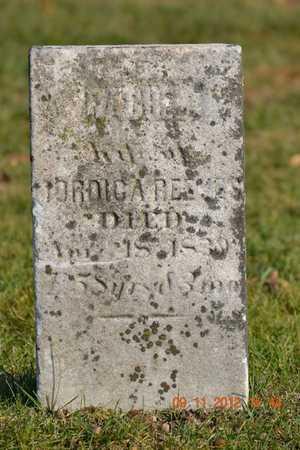 REEVES, RACHEL - Branch County, Michigan   RACHEL REEVES - Michigan Gravestone Photos