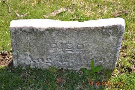 REYNOLDS, AMBROSE - Branch County, Michigan | AMBROSE REYNOLDS - Michigan Gravestone Photos