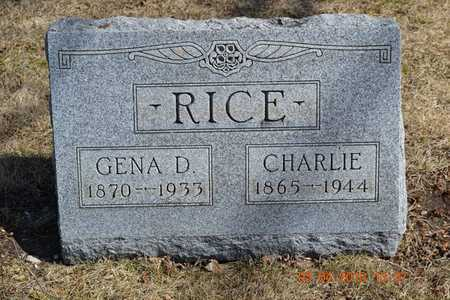 RICE, CHARLIE - Branch County, Michigan | CHARLIE RICE - Michigan Gravestone Photos