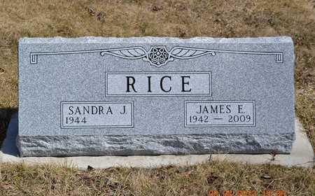 RICE, JAMES E. - Branch County, Michigan   JAMES E. RICE - Michigan Gravestone Photos