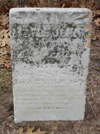 RICHARDS, LITTLE JENNY - Branch County, Michigan | LITTLE JENNY RICHARDS - Michigan Gravestone Photos