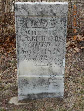 RICHARDS, OLIVE - Branch County, Michigan | OLIVE RICHARDS - Michigan Gravestone Photos