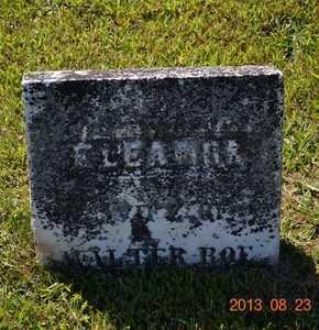 ROE, ELEANOR - Branch County, Michigan | ELEANOR ROE - Michigan Gravestone Photos