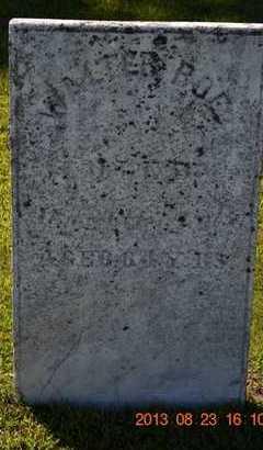 ROE, WALTER - Branch County, Michigan | WALTER ROE - Michigan Gravestone Photos