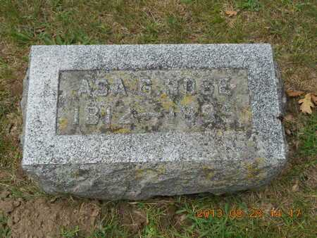 ROSE, ASA G. - Branch County, Michigan | ASA G. ROSE - Michigan Gravestone Photos