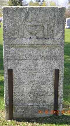 ROSE, ELIAS L. - Branch County, Michigan | ELIAS L. ROSE - Michigan Gravestone Photos