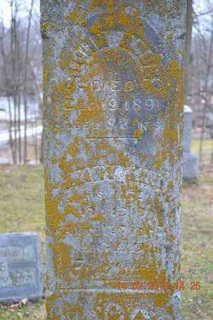 ROSE, JOHN - Branch County, Michigan | JOHN ROSE - Michigan Gravestone Photos