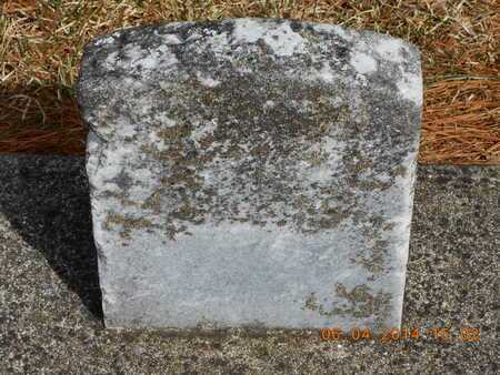 RUNYAN, J. - Branch County, Michigan | J. RUNYAN - Michigan Gravestone Photos