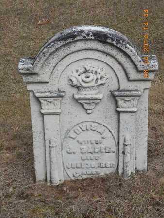 SAGER, LOVISA - Branch County, Michigan | LOVISA SAGER - Michigan Gravestone Photos