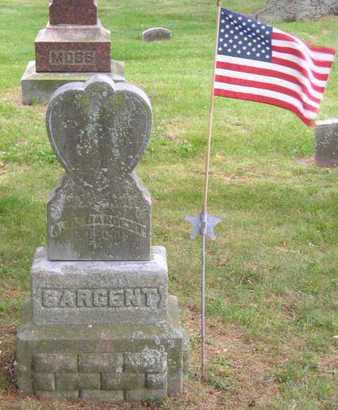 SARGENT, SALINA - Branch County, Michigan | SALINA SARGENT - Michigan Gravestone Photos