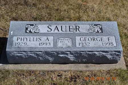 SAUER, GEORGE F. - Branch County, Michigan | GEORGE F. SAUER - Michigan Gravestone Photos