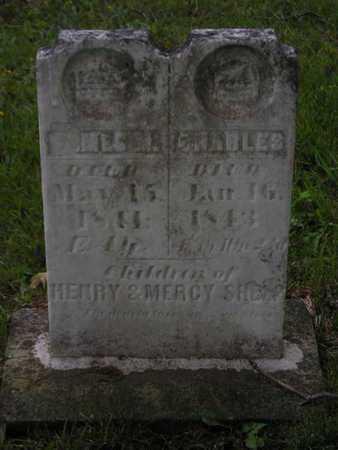 SHELP, JAMES M. - Branch County, Michigan | JAMES M. SHELP - Michigan Gravestone Photos