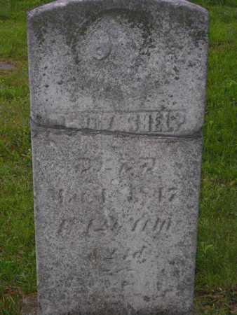 MCDONALD SHELP, MERCY - Branch County, Michigan   MERCY MCDONALD SHELP - Michigan Gravestone Photos