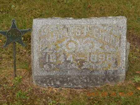 SHOOK, CHARLES P. - Branch County, Michigan | CHARLES P. SHOOK - Michigan Gravestone Photos