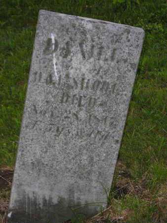 SHOOK, DANIEL - Branch County, Michigan | DANIEL SHOOK - Michigan Gravestone Photos