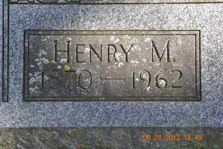 SHOOK, HENRY M. - Branch County, Michigan   HENRY M. SHOOK - Michigan Gravestone Photos