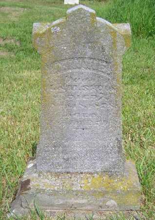 SHOOK, JENNIE - Branch County, Michigan | JENNIE SHOOK - Michigan Gravestone Photos