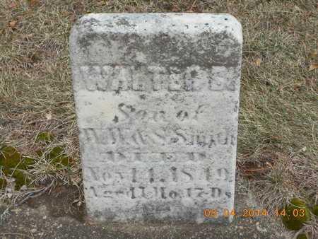 SMITH, WALTER S. - Branch County, Michigan | WALTER S. SMITH - Michigan Gravestone Photos
