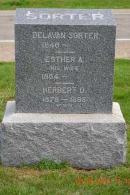 SORTER, DELIVAN - Branch County, Michigan | DELIVAN SORTER - Michigan Gravestone Photos