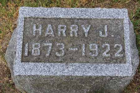 SORTER, HARRY - Branch County, Michigan | HARRY SORTER - Michigan Gravestone Photos