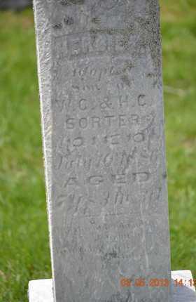 SORTER, HERBIE - Branch County, Michigan | HERBIE SORTER - Michigan Gravestone Photos