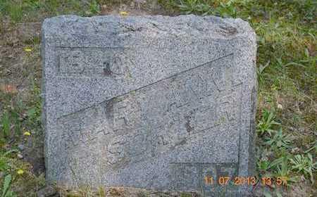 SORTER, MARY ANN - Branch County, Michigan | MARY ANN SORTER - Michigan Gravestone Photos